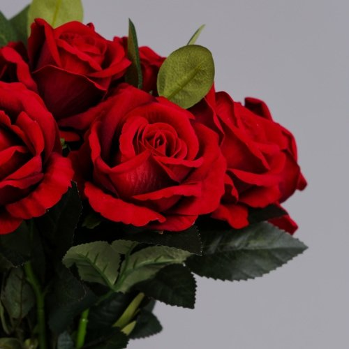 12 Luxury Red Roses 3