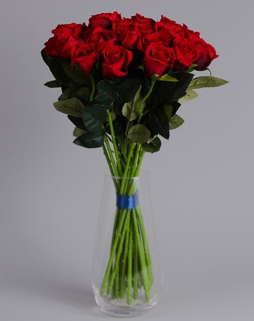 24 red roses 4
