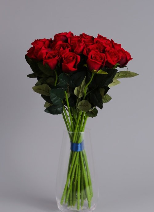 24 red roses 5