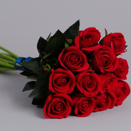 12 Red Roses 8