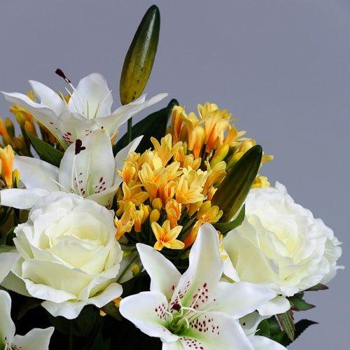 Yellow Agapanthus