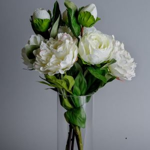 silk white peonies