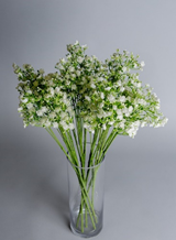 White Artificial Gypsophila