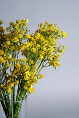 Yellow Artificial Gypsophila