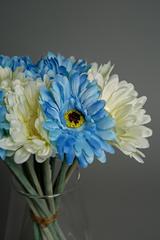 Blue and White Artificial Gerberas